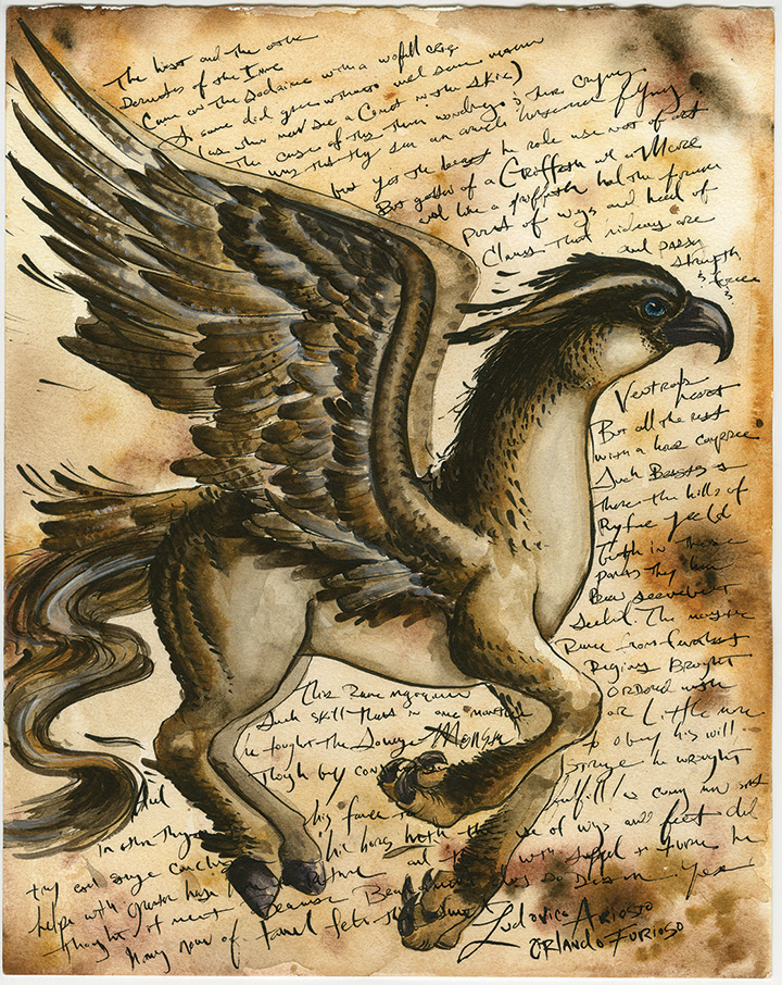 Hippogriff Paired Only