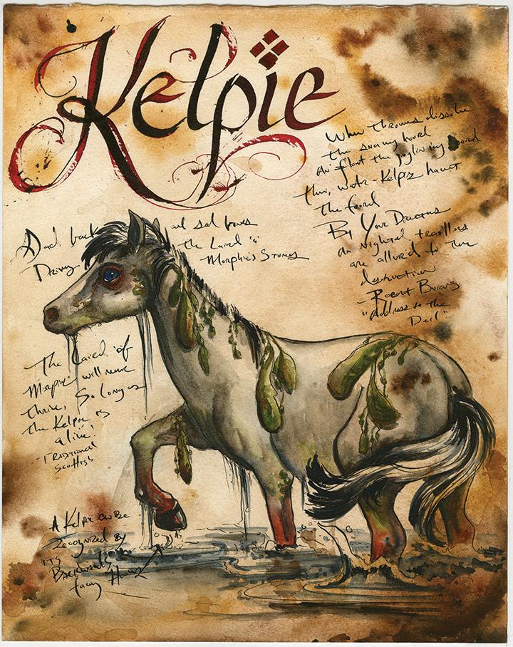 Kelpie- ADOPTED