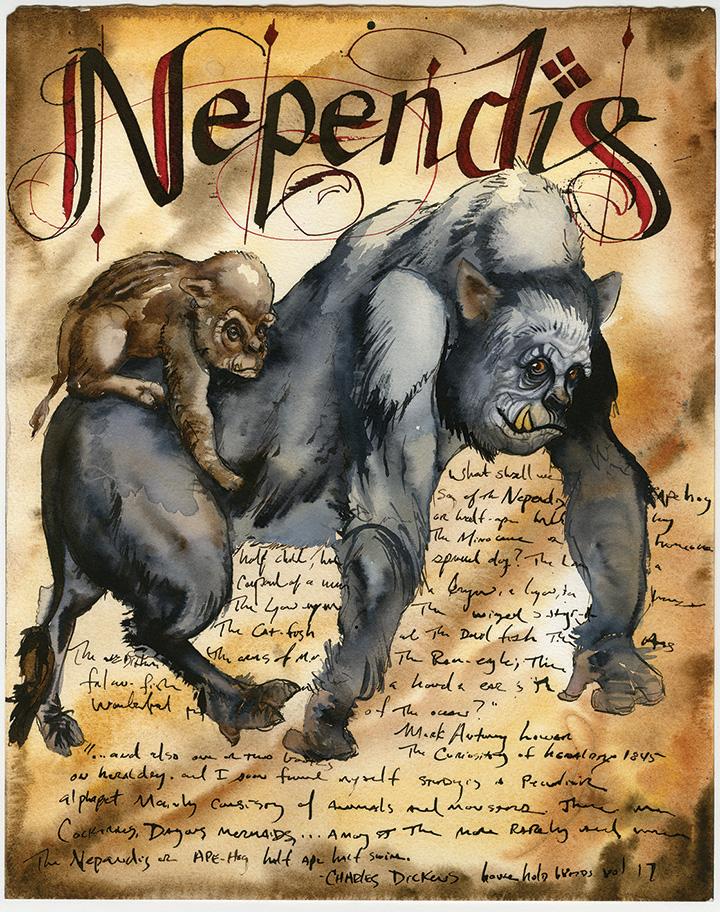 Nependis