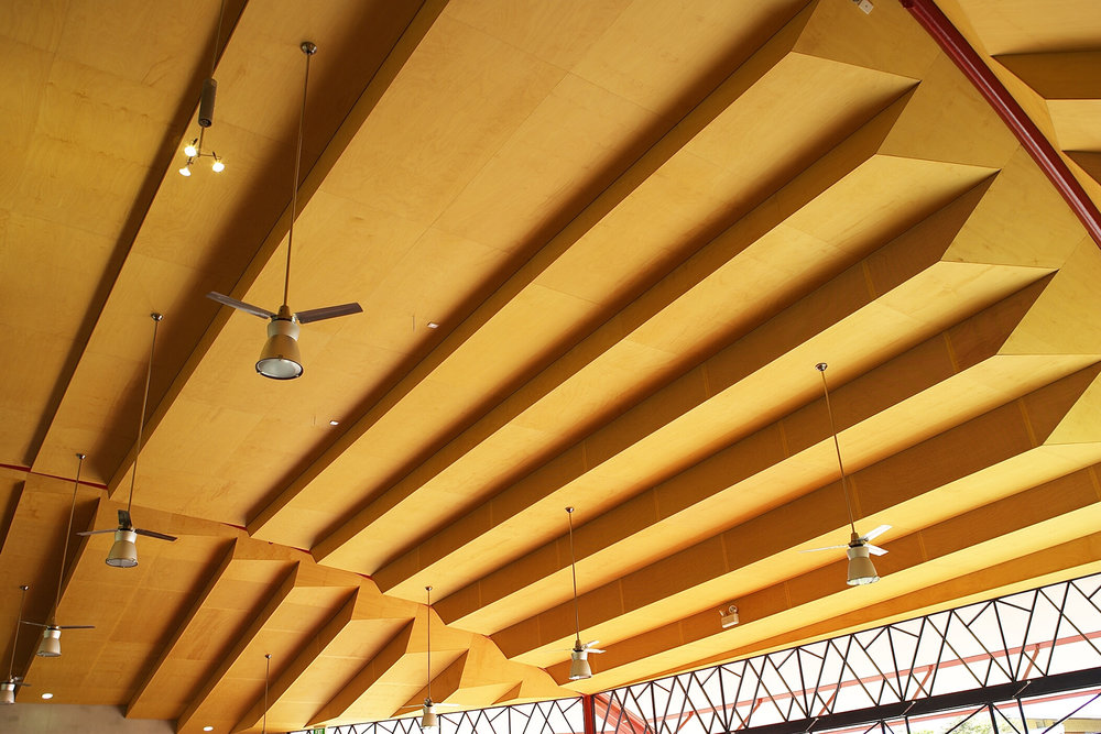 Pine Ply Ceiling
