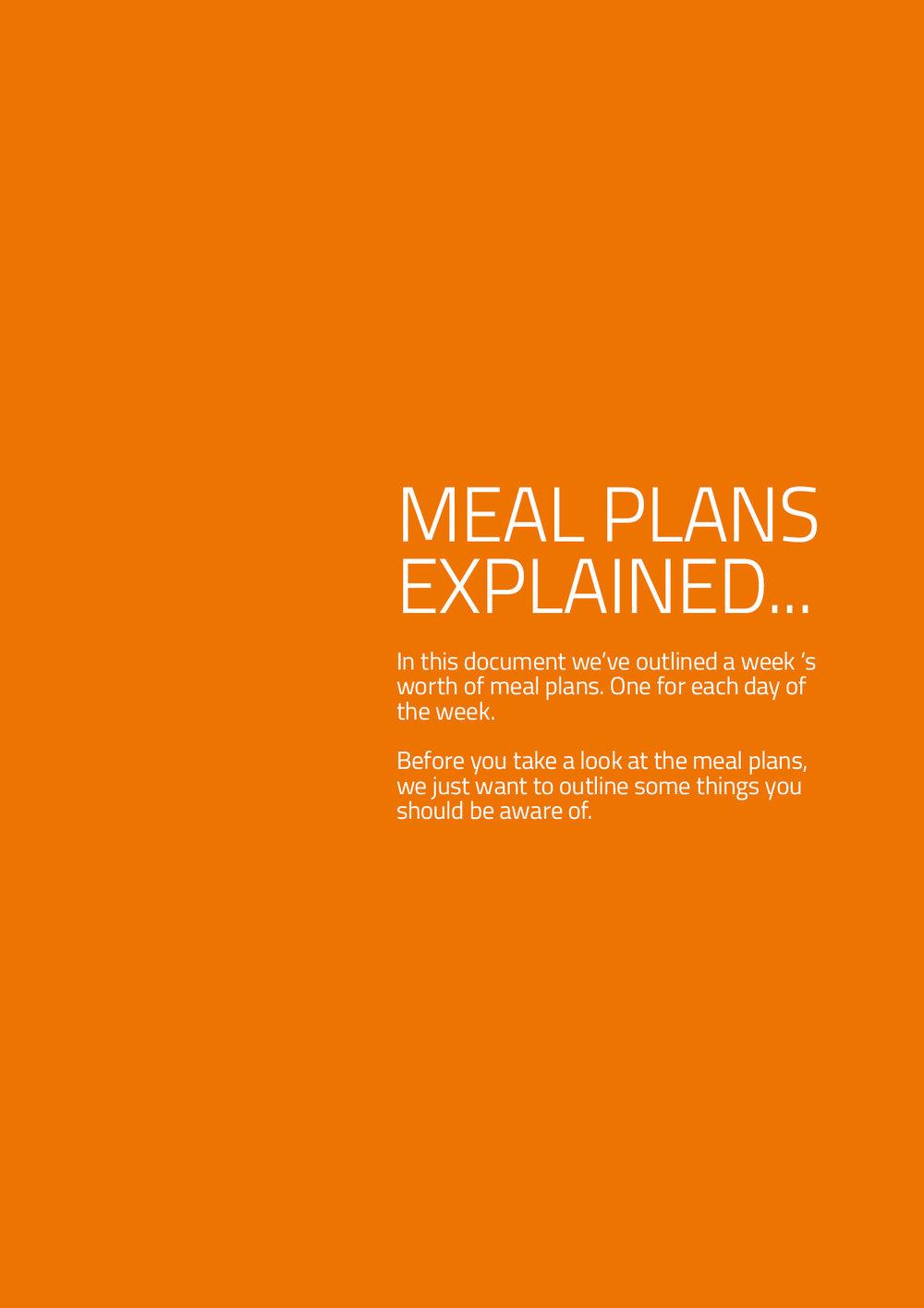 1900-2100 Meal Planner2.jpg