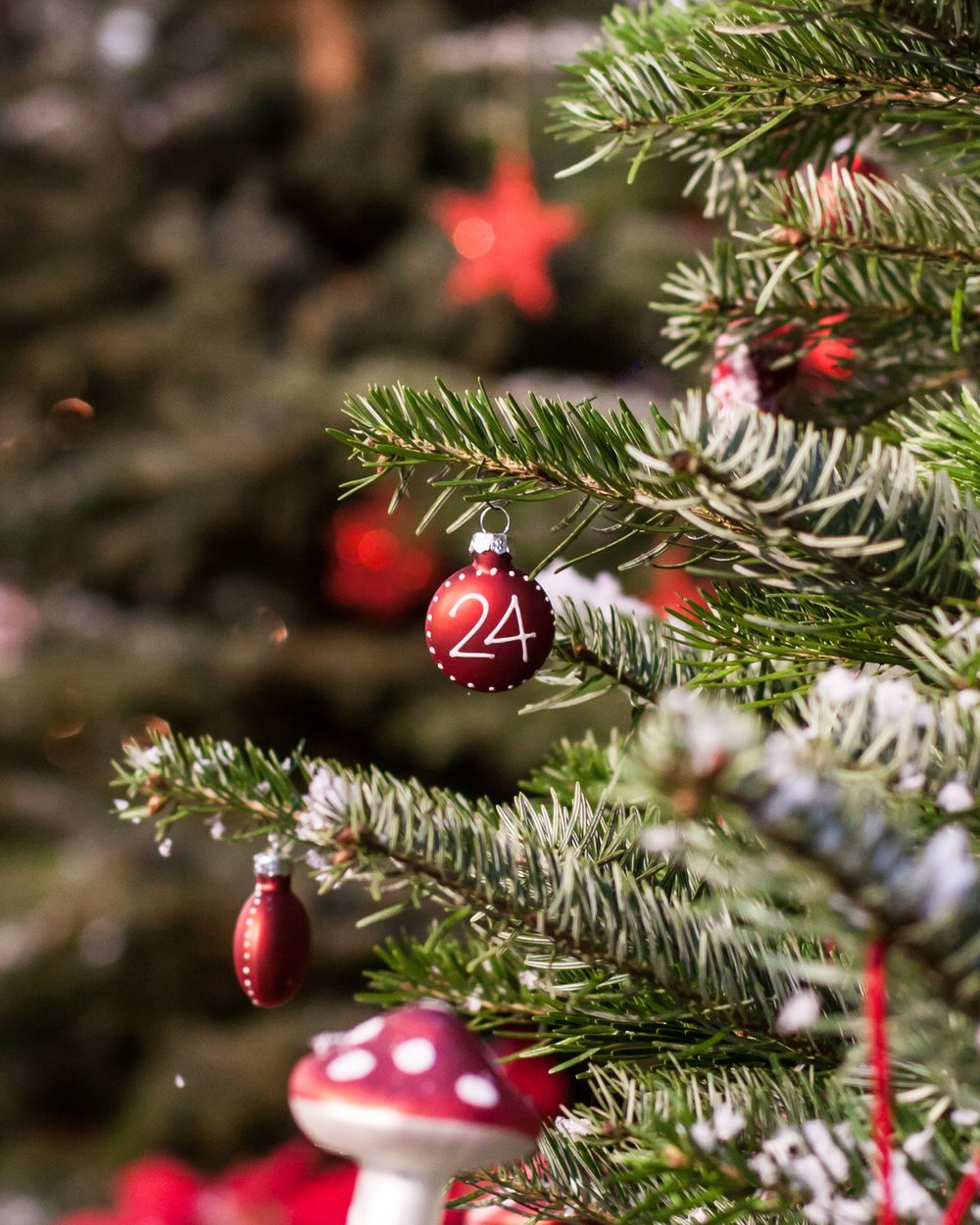 tree-branch-plant-red-evergreen-christmas-1061130-pxhere.com.jpg
