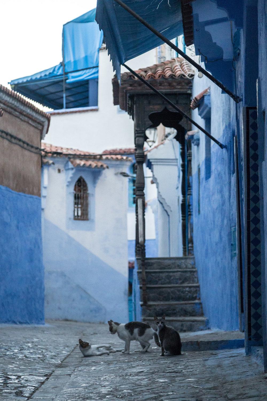 20170701_ebb_morocco_01_138.jpg