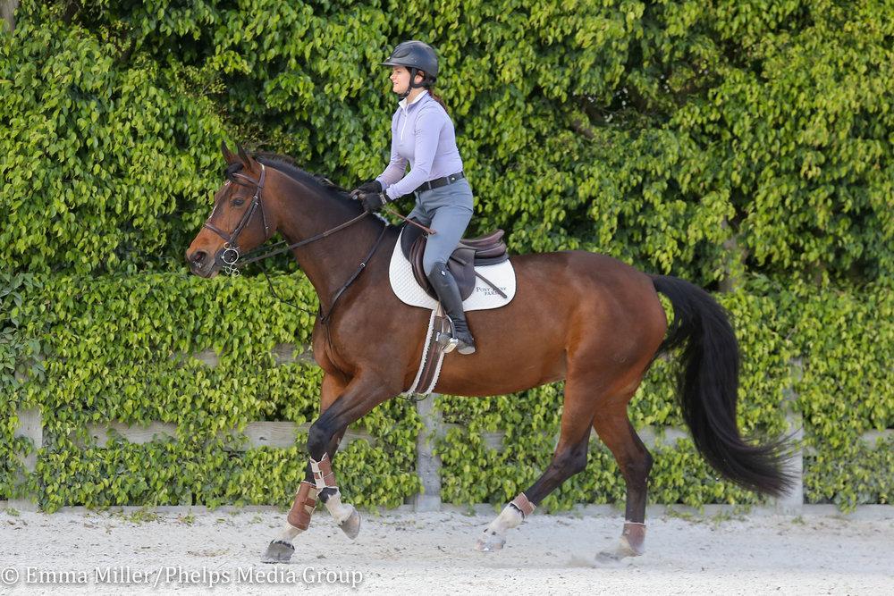Pony Lane Farm, Tosca-6.jpg