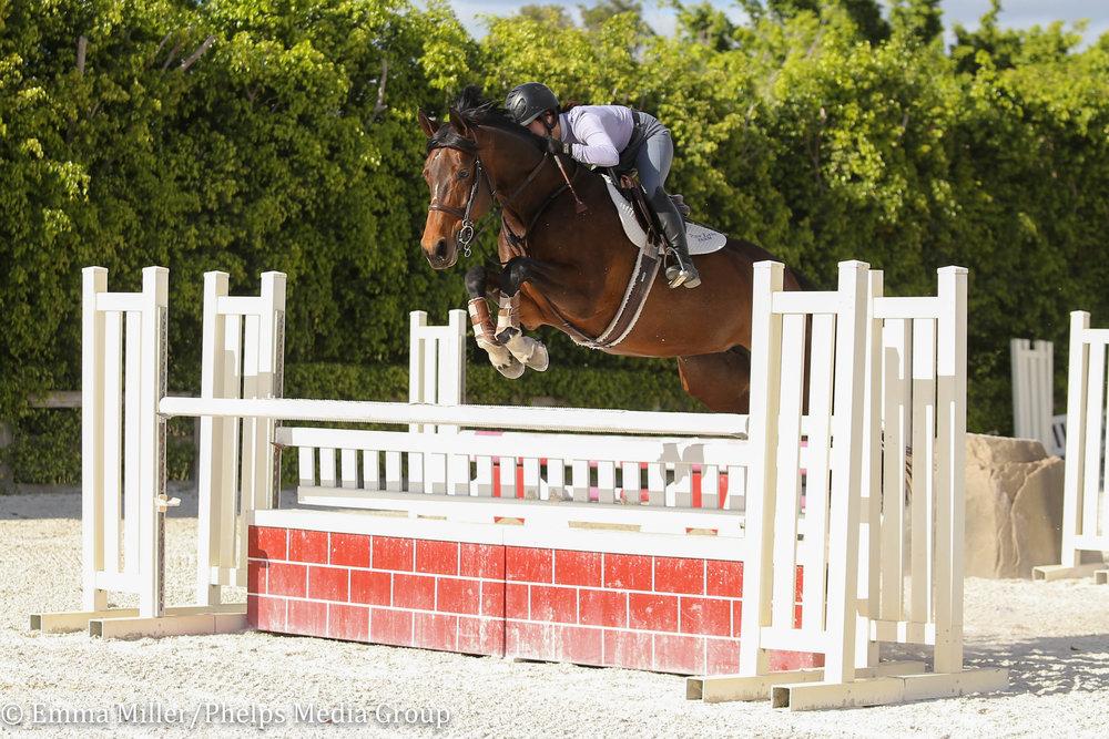 Pony Lane Farm, Tosca-8.jpg