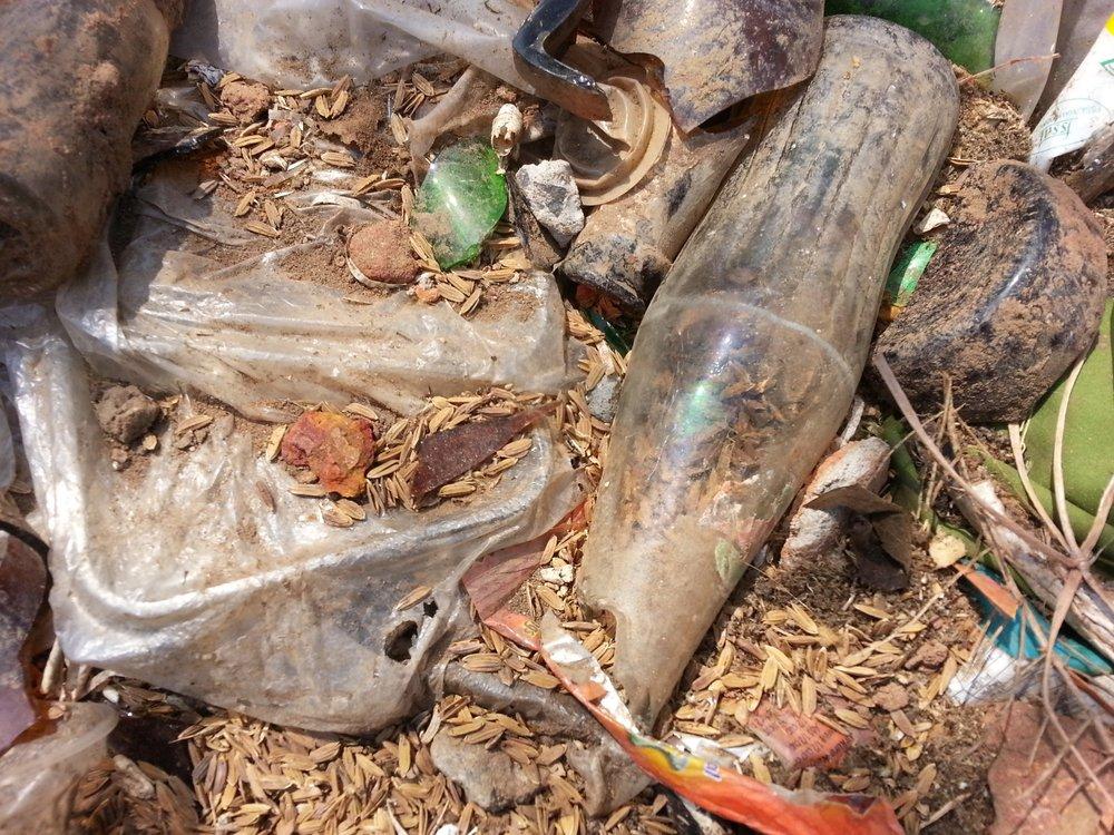 pedagogies of waste.jpg