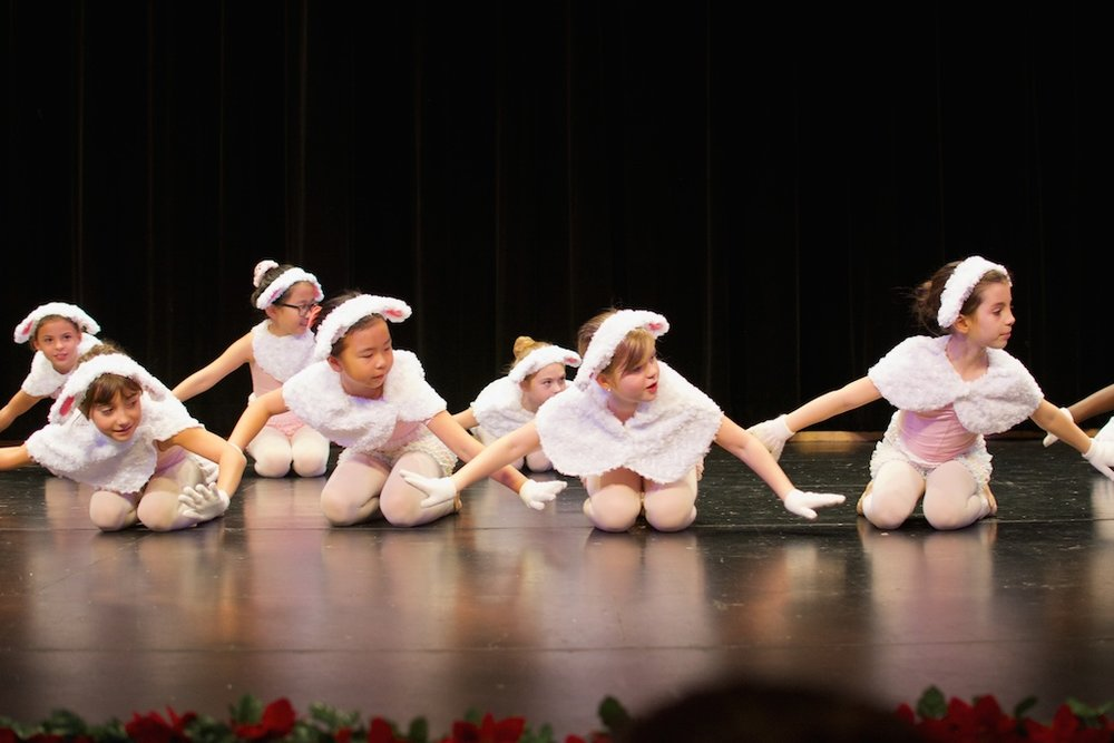 Karin Hobby Dance Academy - Junior Ballet
