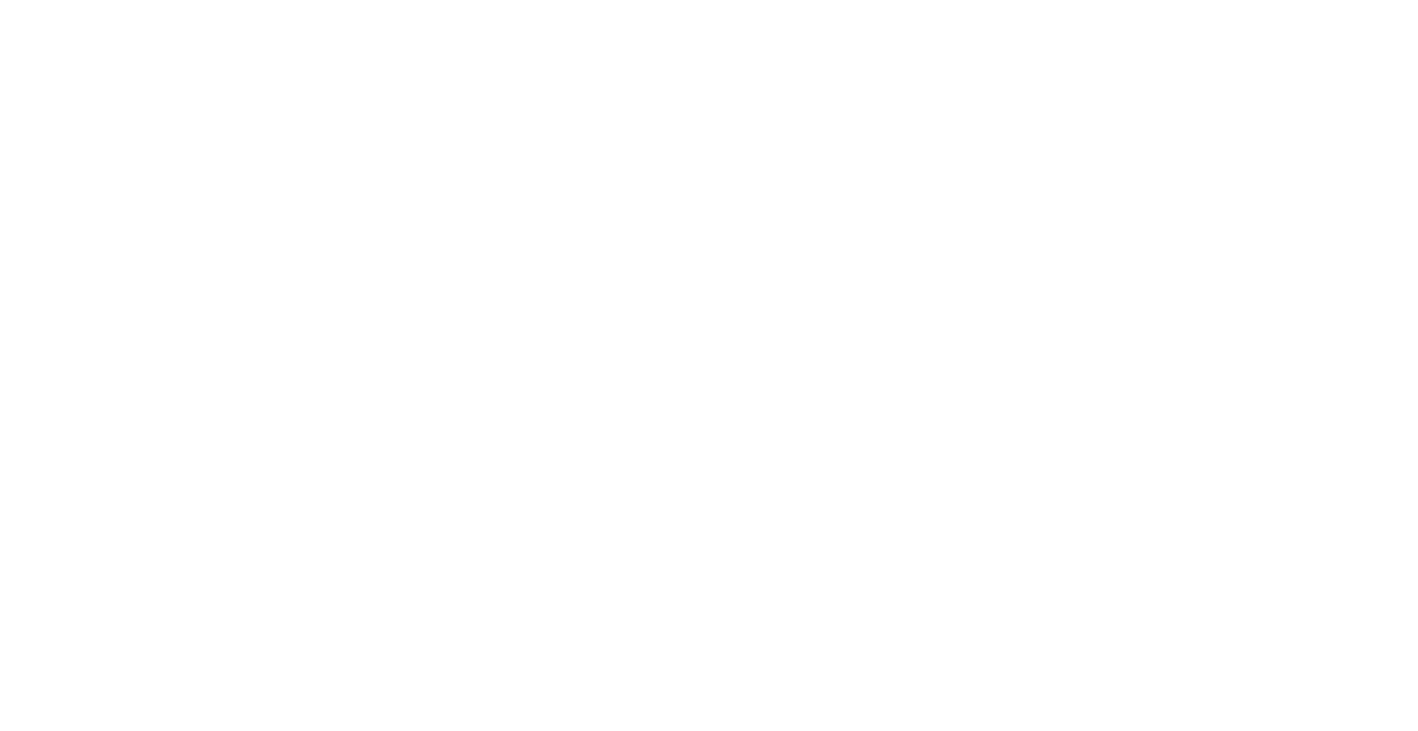 Italian Trade Agency - Chicago
