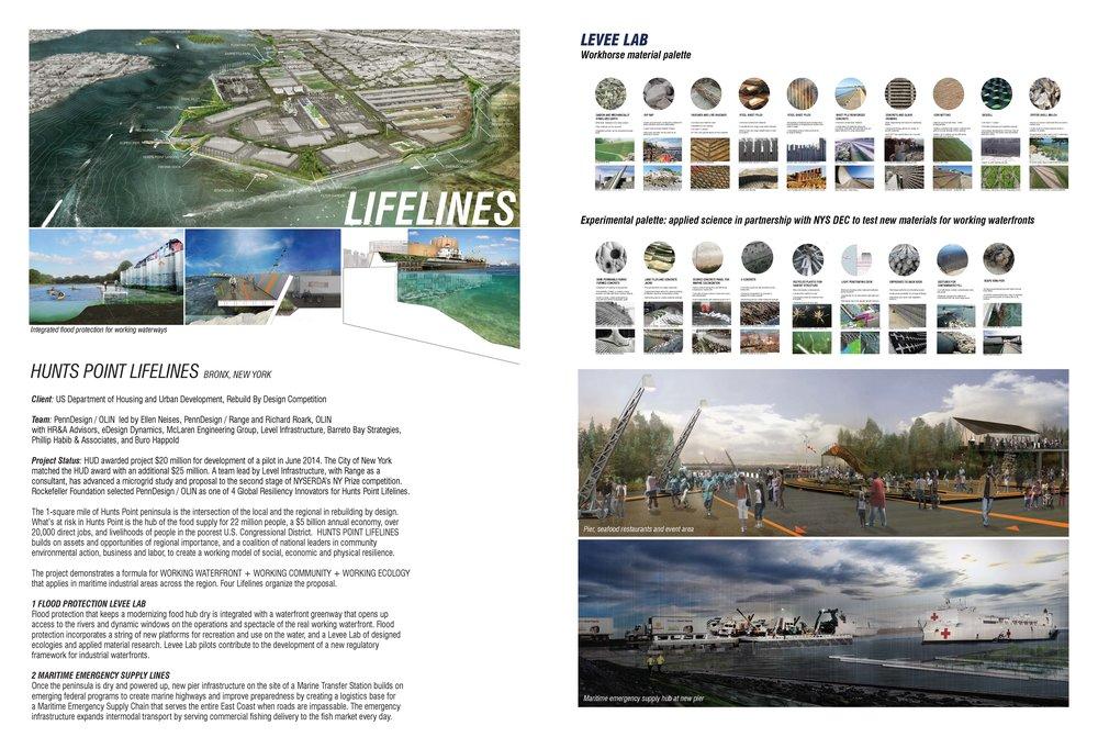Lifelines_Page_1.jpg