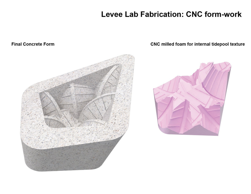 18_0123_Levee Lab website slides2.jpg