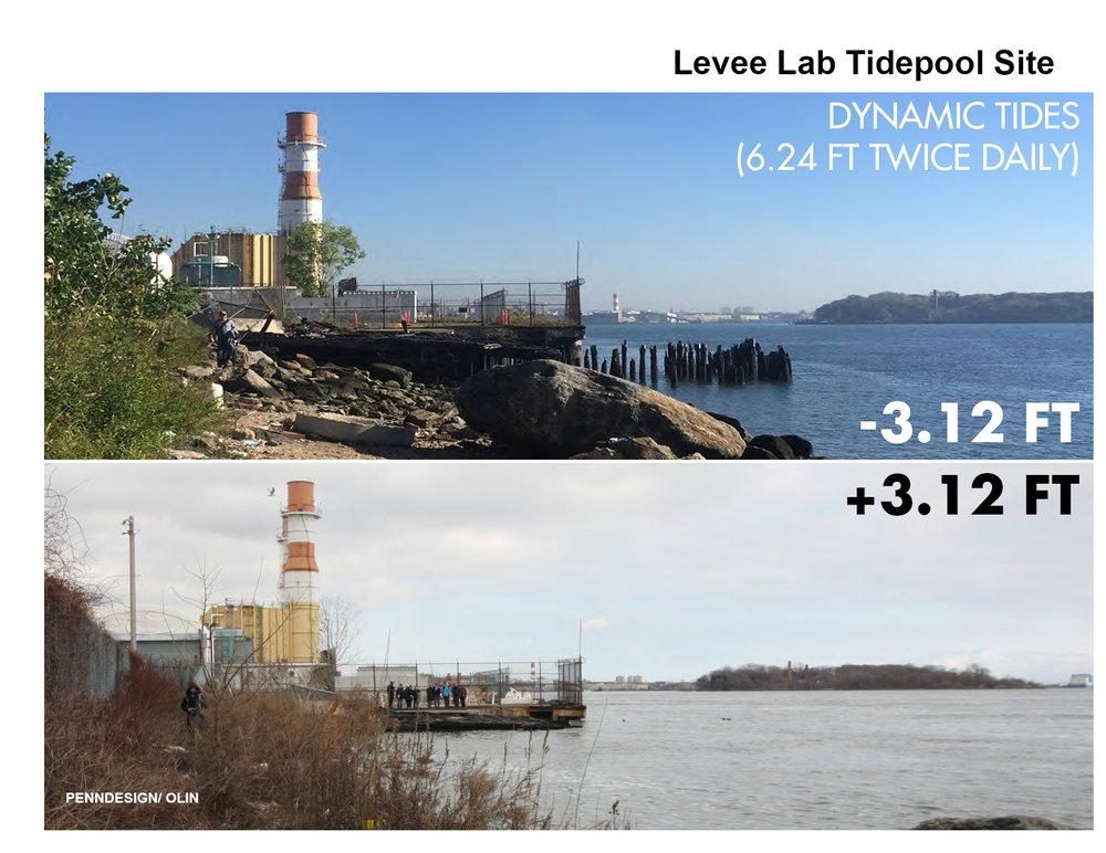 18_0123_Levee Lab website slides5.jpg