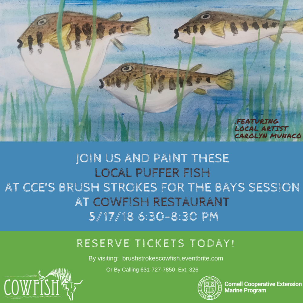 Brush Stroke for the Bays Cowfish 2 Instagram Flyer.png