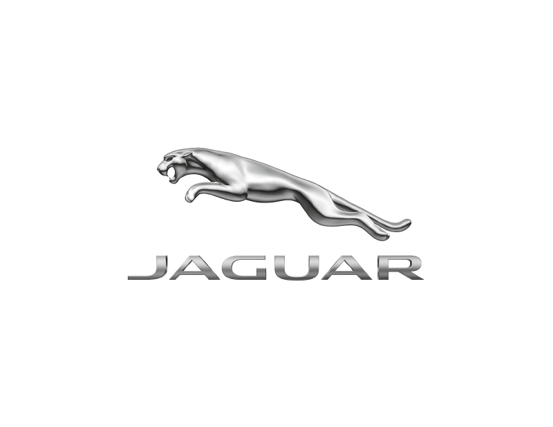 15cm_RGB_Clear-bkgrd-Light_Jag-logo-(1)-(1).png