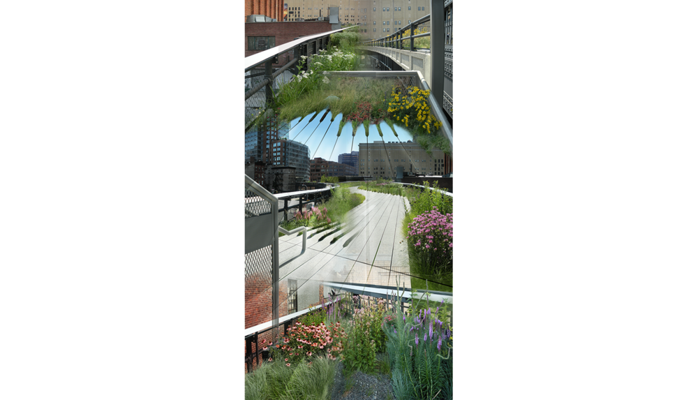 "High Line Two (Les Fleures) , 2009, Digital C print, 26 x 50"""