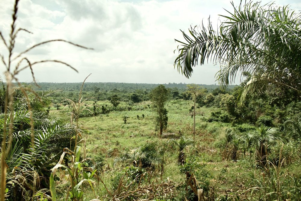 We purchased 15 acres of land in Kumasi, Ghana in December of 2017. This was part of Phase 1 in our plan.
