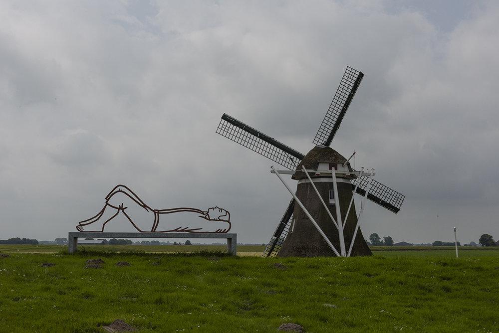 Roodehaan, Groningen, 2016