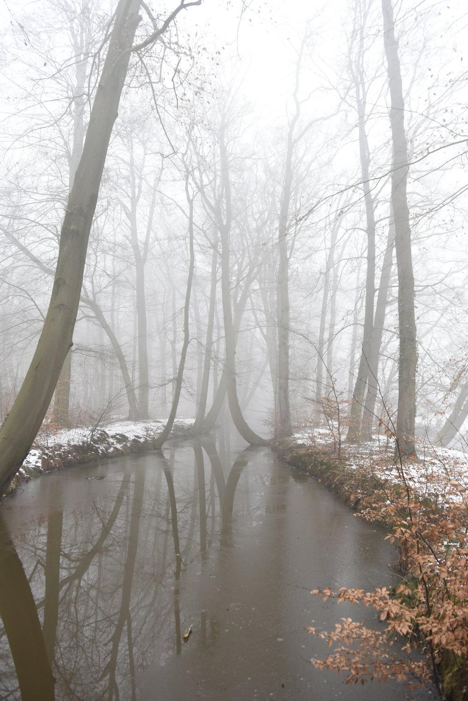 ©BobSchalkwijk _B320519.JPG