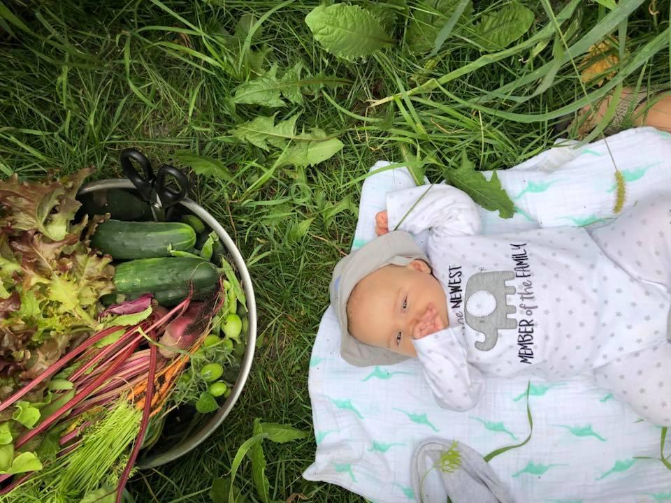 babyandgarden