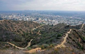 Hiking Trails In Runyon Canyon