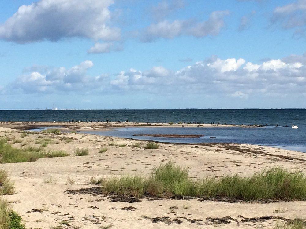 stranden på vejrø resort.jpg
