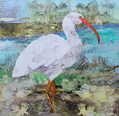 "Cynthia Burkett - ""Ibis Island FB"""