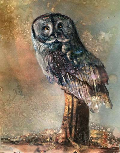 "Ray Martin - ""Great Gray Owl"""