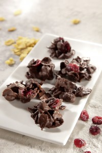 Vegan for fun_Crunchy Chocolate Cranberry Drops