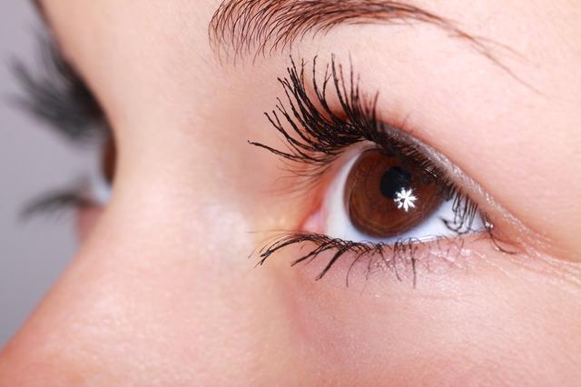 Close-up-Eyelashes-Eyebrows-Beautiful-Eyes-Eye-2315.jpg