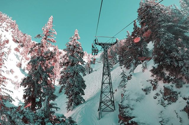 THE TEAL PINK PROJECT: 041 * * * #ttpp #thetealpinkproject #tealpink #teal #pink #project #sonya6000 #gopro #djimavic #photography #skilift #snow #pinetrees #gnar #pow #snowboarding