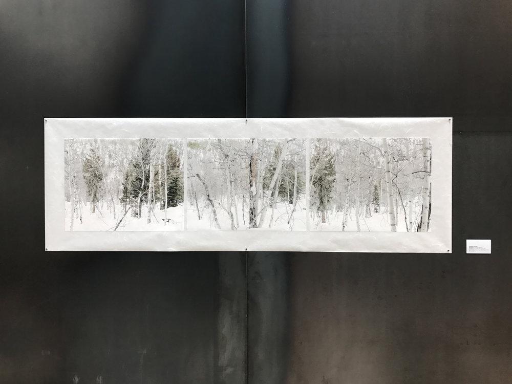 Meditation on Snow #2, 2017