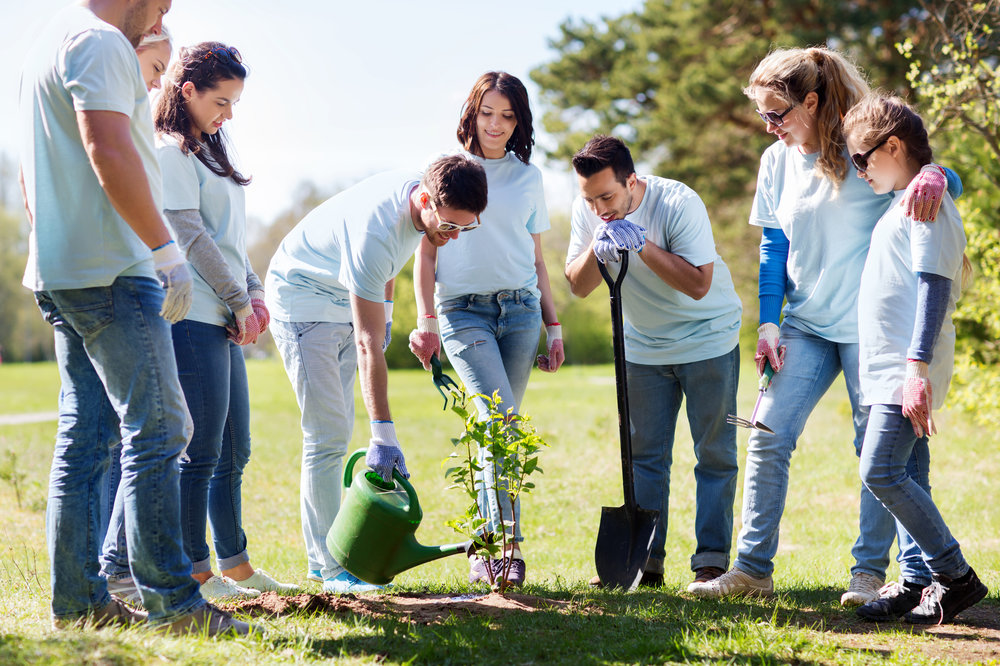 Adults planting tree.jpg