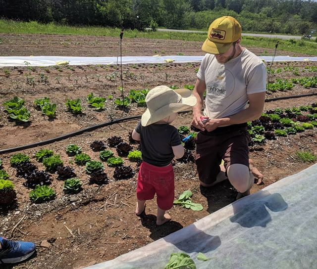 We had the cutest visitor at the farm today! Our nephew Jack learned all the secrets to eating veggies right out of the garden (wipe the dirt off on your shirt!) #futurefarmer