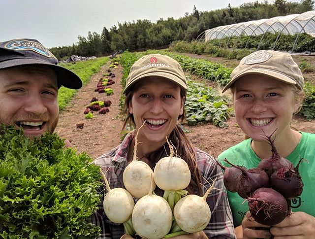 Lettuce turnip the beet! The farm crew busted their butts today (and everyday) so you can eat awesome all week! @cassidybradley_ #farmpuns #farmcrew #fridayfun