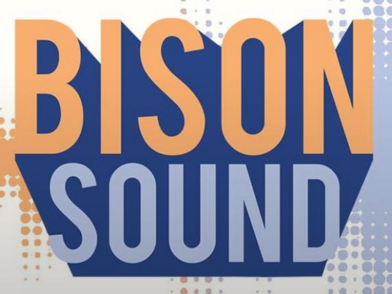 Bison Sound