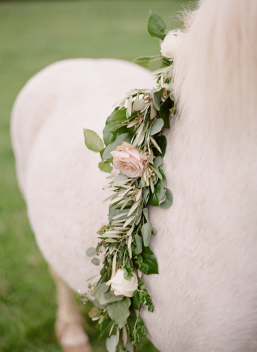 Horse rose garland in Burgundy and blush wedding by Love & Luster Floral Design
