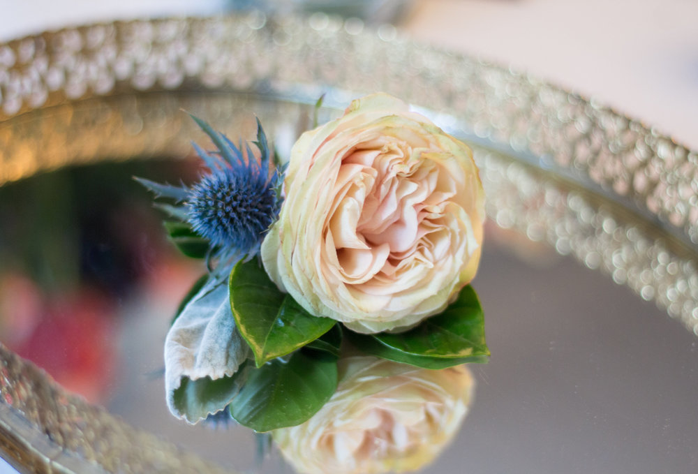 Love & Luster Floral Design Blush Garden Rose Boutonniere with Thistle