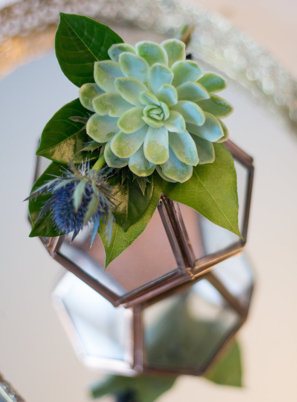Love & Luster Floral Design Succulent and Thistle Boutonniere