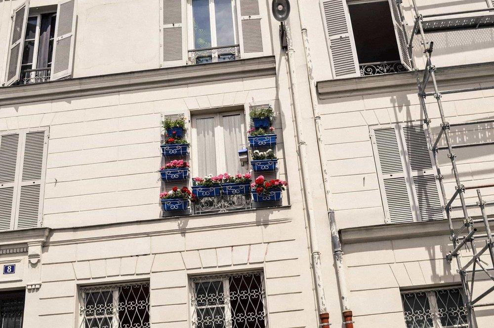 DNasim_2017_France_19.jpg
