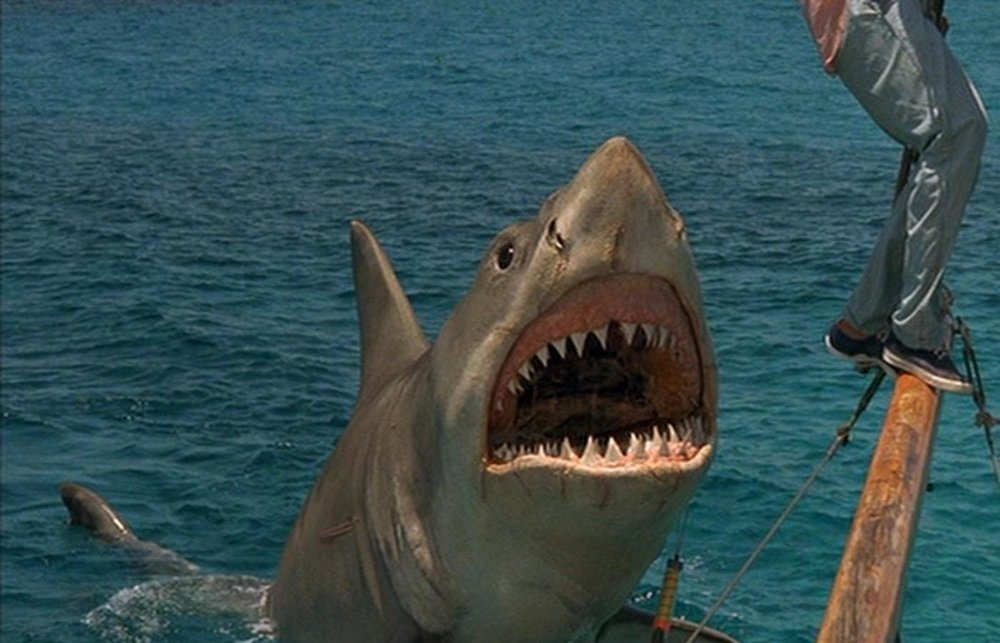 Jaws-The-Revenge.jpg