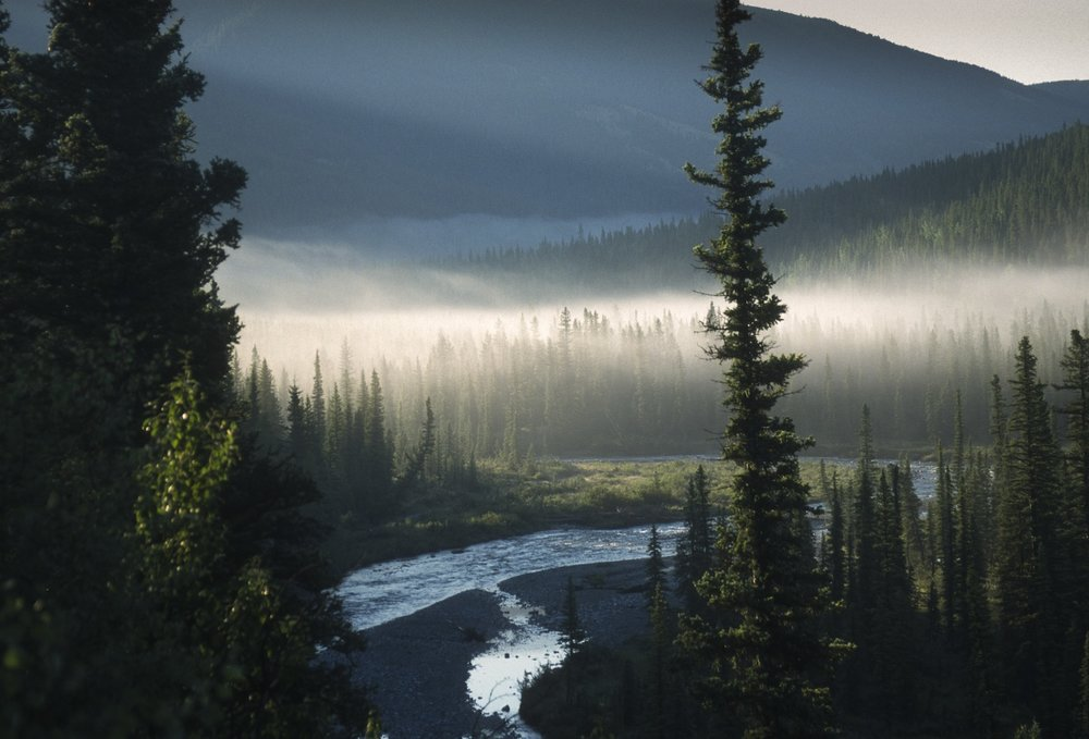 Thousands of people enjoy the Kananaskis landscape each year, but few of them know that it is not fully protected. Photo credit: Stephen Legault.