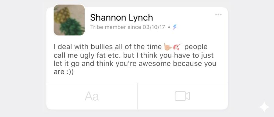 Bullies1.png