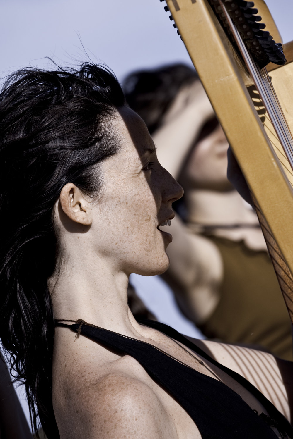 The Wind & The Harp...