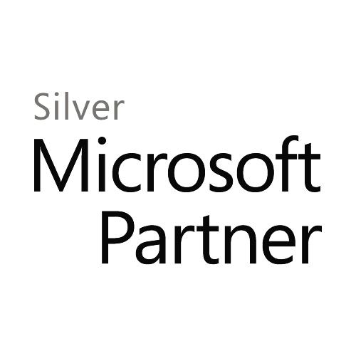 MS Silver.jpg