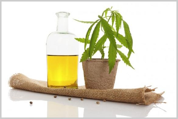 TMedical-Cannabis-Marijuana.jpg