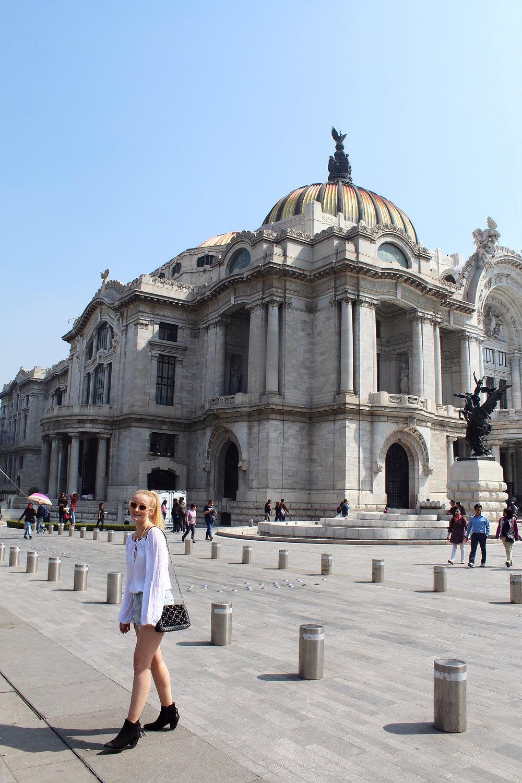 taylor-anderson-mexico-city