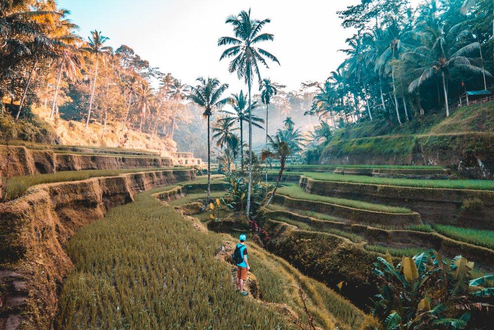 digital-nomad-travel-abroad
