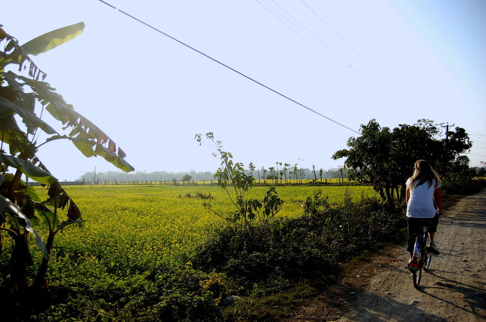 chitwan national park.jpg