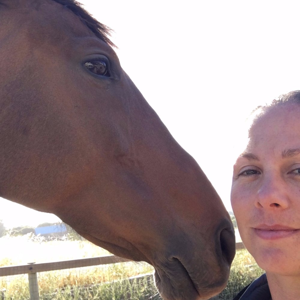 Training 'From' Your Horse Workshop -
