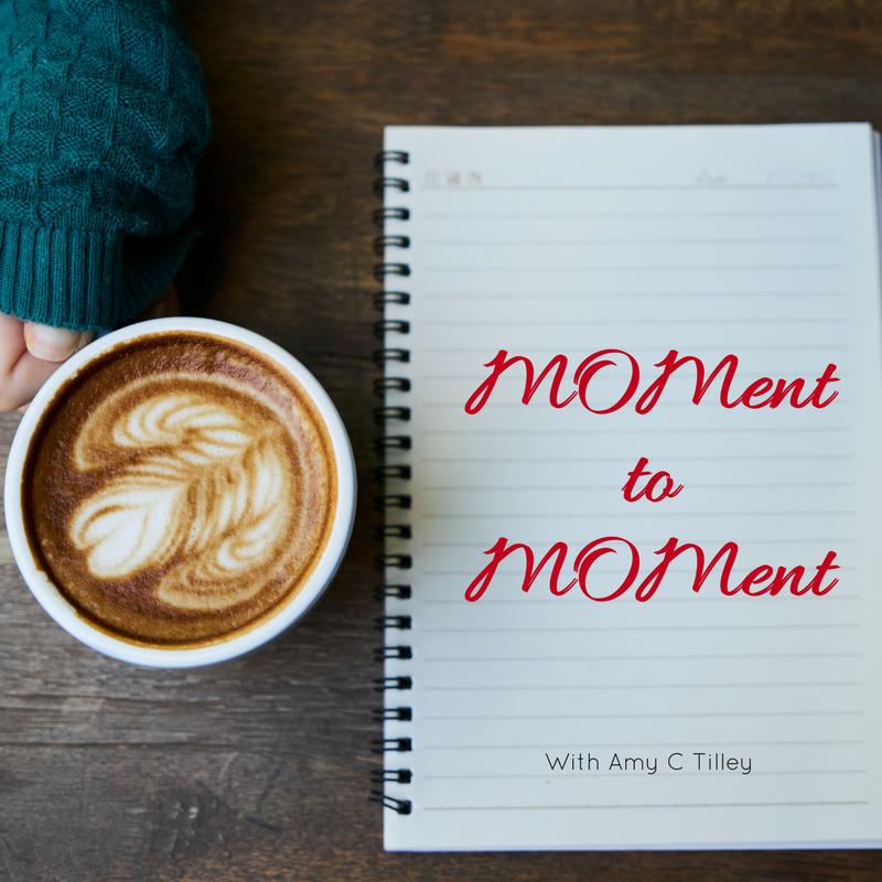 MOMenttoMOMent thumbnail.png