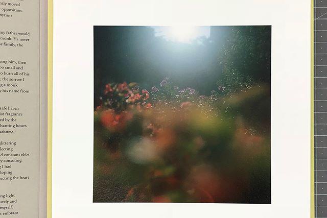 김정인 작가의 사진집   세컨드 에디션 판매가 시작되었습니다. 세컨드 에디션에는 새로운 이미지의 오리지널 프린트가 들어있어요💐💐구매를 놓치셨던 분들은 닻프레스 온/오프라인 스토어를 방문해주세요! 전시는 5/31까지 계속됩니다:)